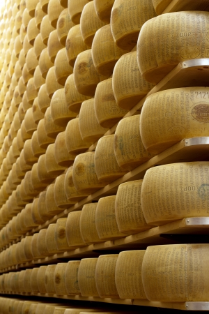 wheels of cheese on the racks of a maturing storehouse photo