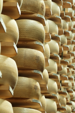maturing: parmesan cheese in the shelves of a maturing storehouse Stock Photo