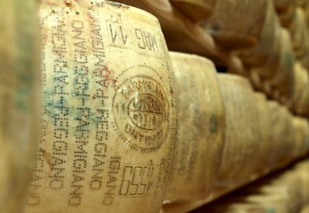経験豊かなパルメザン チーズの輪のクローズ アップ 写真素材