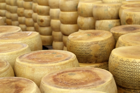ripened: wheels of seasoned parmesan in a dairy factory