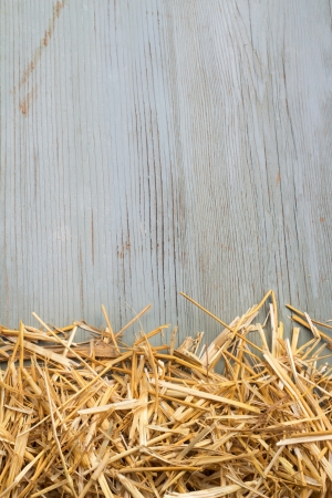 hayrick: heap of hay against an old blue wooden wall Stock Photo