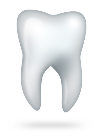 stomatology icon: healthy molar tooth isolated on white background