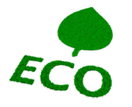 biodiesel: leaf and word eco made ​​of grass