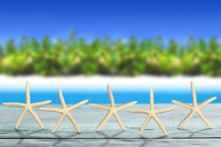 best travel destinations: five sea stars on wooden table in tropical landscape