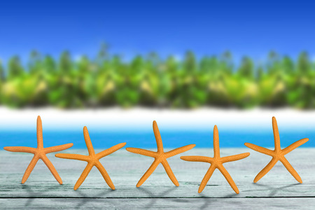 best travel destinations: five starfish on wooden table in tropical landscape