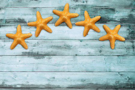 five sea stars on a turquoise wooden board photo