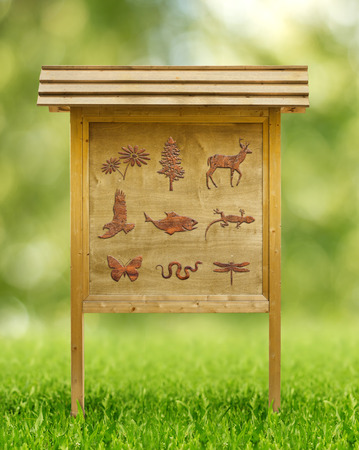 game reserve:  icons of flora and fauna in a wooden placard Stock Photo