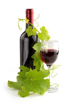 twig of grapevine twined on a red wine bottle photo