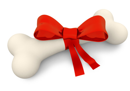 chew: dog bone with red ribbon on white background