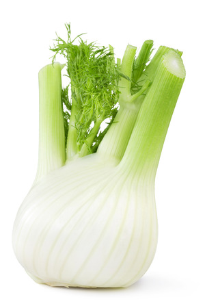 single object: close up of fresh fennel isolated on white background