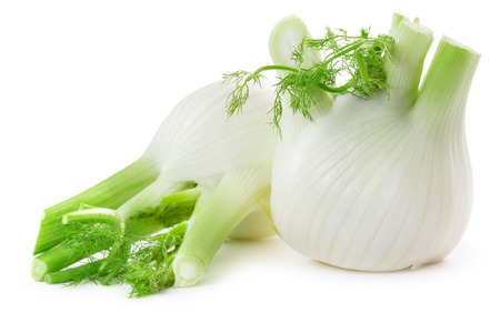 白の背景に分離された 2 つの新鮮な fennels