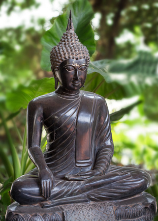 thalasso: statuette of Buddha in a background of green foliage Stock Photo