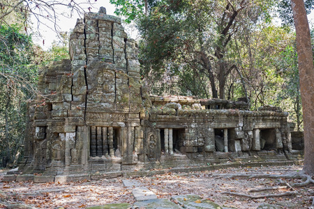 ta: khmer building in the jungle on Ta Prohm site