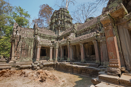 ta: stone temple of ancient Khmer culture in ta prohm