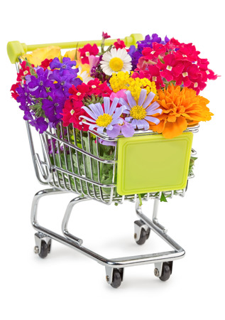 shopping cart full of wildflowers isolated on white Stock fotó