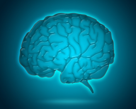 background isolated: transparent brain model isolated on blue background Stock Photo