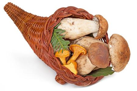 boletus mushroom: cornucopia filled with fresh ceps and chanterelles