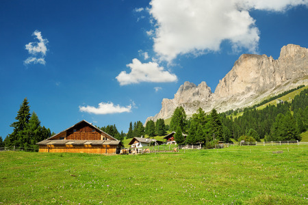rosengarten: cottages in a green meadow in south tyrol