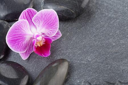 black pebbles: black pebbles and purple orchid on slate