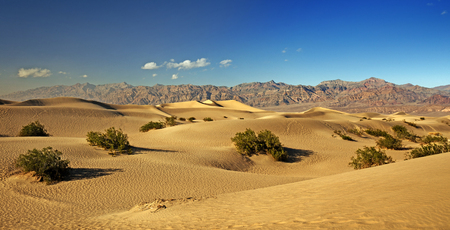 valley view: panoramic view of sand dunes in Death Valley