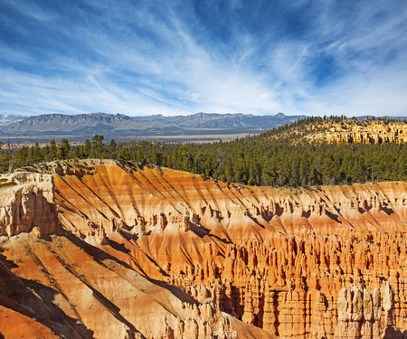 hoodoos: hoodoos and fir forest in the Bryce Canyon