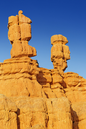 canyonland: beautiful hoodoo rock formations in bryce canyon Stock Photo
