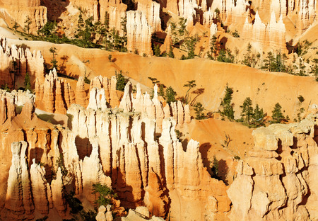 geological: rock formations in Bryce Canyon at sunset