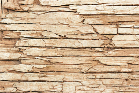 extreme close up: extreme close up of an old cracked wooden surface Stock Photo