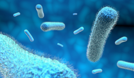 microorganism: microscopic bacteria in blue background, 3d illustration Stock Photo