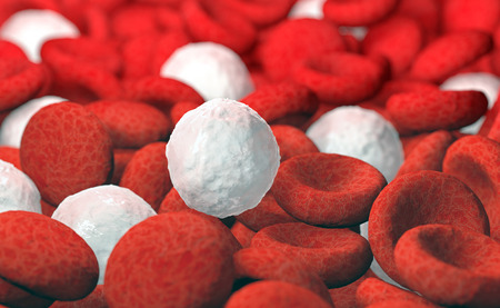 red and white blood cells, 3D illustration Stock Photo