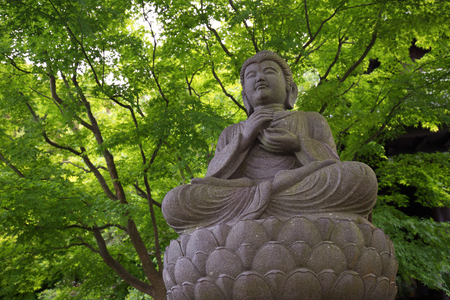 Buddha stone statue and green maple trees in the background Stock fotó