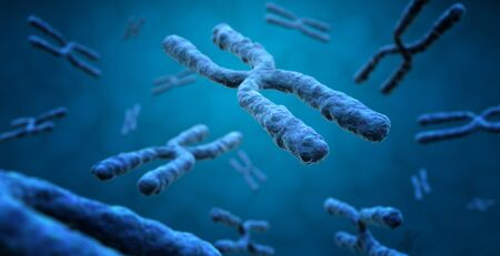 3d rendering of X chromosomes in blue