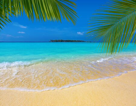 palm leaves over a sandy tropical beach, turquoise sea and island in the background, Maldives