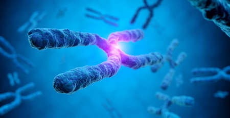 magnification of X chromosome with a glowing effect in a blue background, 3d illustration - concept of cloning and genetic mutation