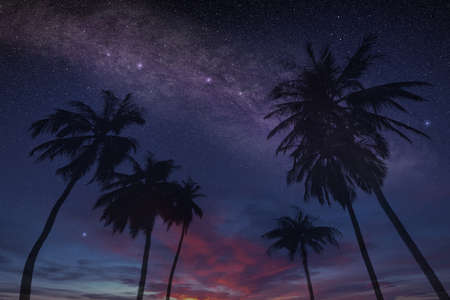 magical summer night sky on a tropical island with stars and constellations, exclusive and relaxing vacation concept