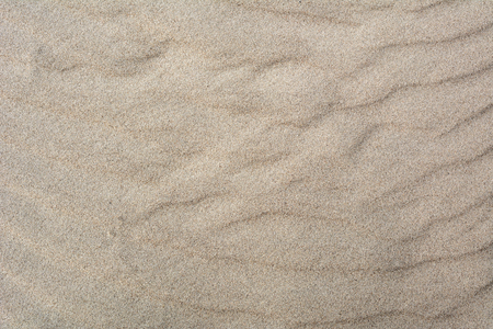 Natural sand texture. Sandy beach dune for background.