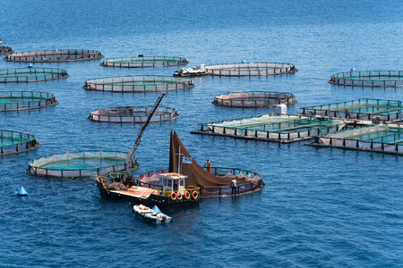 Fish farming near Kassiopi town. Corfu Island. Greece. Foto de archivo - 94258464