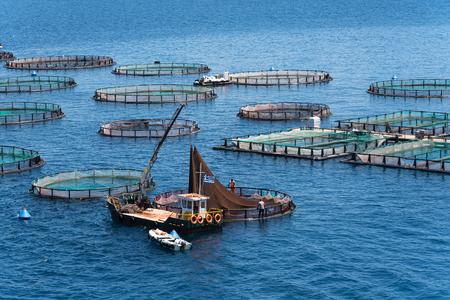 Fish farming near Kassiopi town. Corfu Island. Greece.