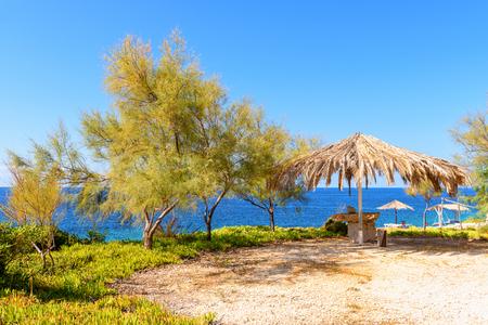 Pine trees and umbrella ona Porto Roxa beach in sunny day. Zakynthos island, Greece