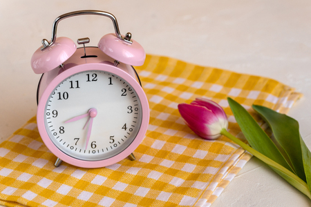 Pink alarm clock and fresh tulip flower. Spring time change.