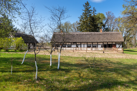 Fruits trees and typical traditional Polish country thatched house. Kluki, Poland