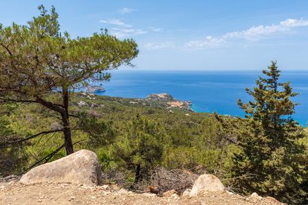 Green pine trees on rocky coast on west side of Rhodes island, Greece