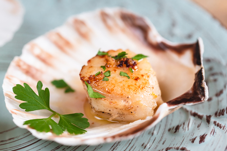 Seared scallops shell with butter, garlic and parsley. Standard-Bild
