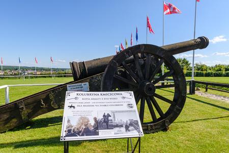 GOLUB-DOBRZYN, POLAND - July 18, 2019: A copy of a cannon in the green area of Teutonic Castle in Golub-Dobrzyn Editorial