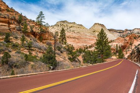 Road through the Zion National Park. Landscape of rock hills and trees. Utah, USA Stok Fotoğraf