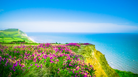 English summer holidays countryside in the background with the blue sea  English Channel captured with selective focus. Golden Cap on jurassic coast in Dorset, UK. Stok Fotoğraf