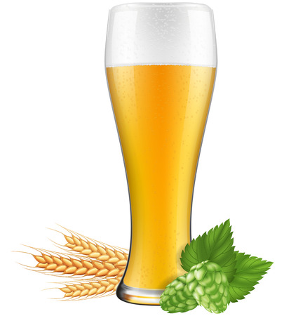 barley hop: Beer glass with hops and barley. Photo-realistic EPS10 illustration.