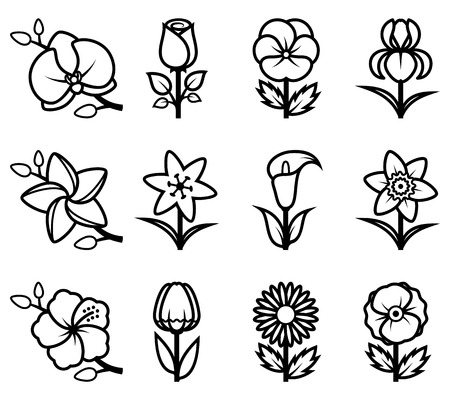 orchid isolated: Stylized flowers icon set.