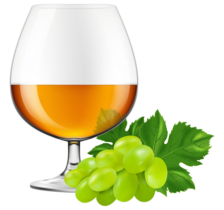 brandy: Brandy glass with grapes. Vector illustration. Illustration