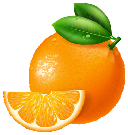 illustration: Orange illustration.
